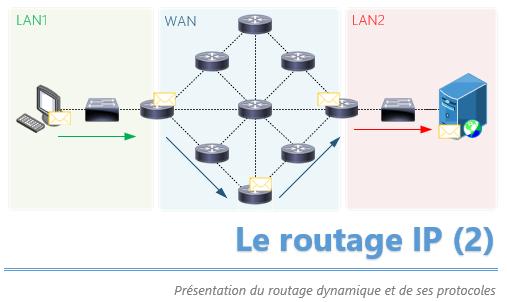 Introduction au routage IP dynamique [+vidéo]